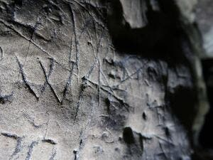 'Witches' Marks' (Twitter)