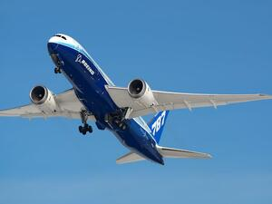 """Hopefully, we will provide EgyptAir with more Dreamliner jets as they to be of proved high quality,"" (Shutterstock)"