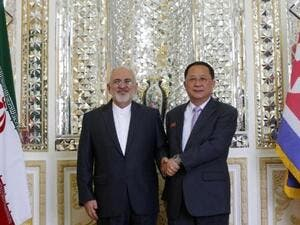 Iran's Foreign Minister Mohammad Javad Zarif (R) shakes hands with North Korea's Foreign Minister Ri Yong Ho during their meeting in the capital Tehran on August 7, 2018. (ATTA KENARE / AFP)