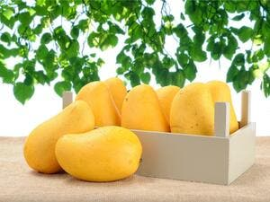 Omanis are incredibly excited about mango season. (Shutterstock)