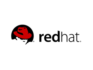 Red Hat, Inc., commissioned RHInsights to poll the views of 253 IT decision makers from large and very large enterprise organizations in the U.S., Europe, and Asia.