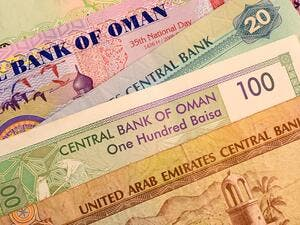 All six member countries including Qatar have agreed to contribute initial capital. (Shutterstock)