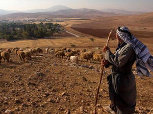 Bedouin looks out over historic Jordan Valley /AFP