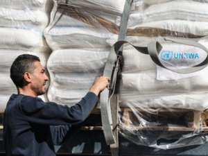 A Palestinian worker checks a truck carrying United Nations Relief and Work Agency (UNRWA) aid supplies that arrived through the Kerem Shalom crossing in the southern Gaza Strip city of Rafah on May 12, 2019. Israel reopened its crossings with the blockaded Gaza Strip after closing them during a deadly escalation earlier this month, an official said, as a fragile truce held.