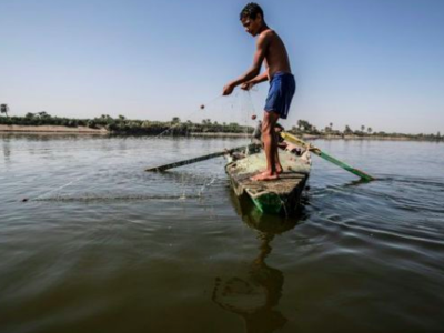 A young Egyptian fisherman pulls his net in the River Nile in a village near Minya, south of the capital Cairo (AFP Photo/Khaled DESOUKI)