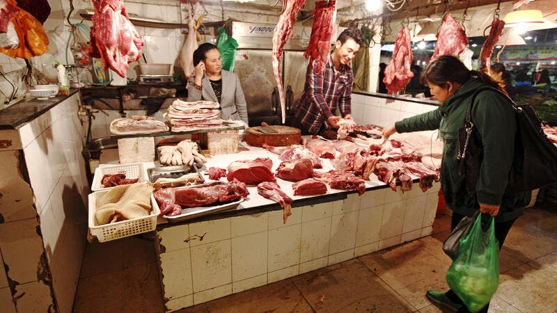 'Learn the Lesson': China's Dog Meat Festival Faces Demands Amid Coronavirus