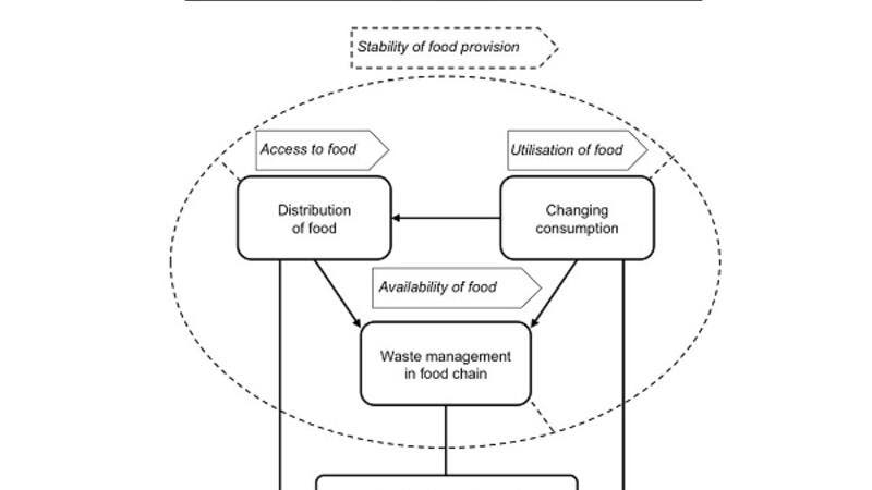 The SAFE-Q researchers conducted a detailed analysis of the causes of food waste occurring during the handling, distribution, transportation, and storage of food.