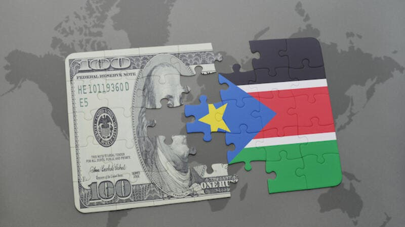 It was unclear whether the latest devaluation was part of a move to float the pound as recommended by the International Monetary Fund (IMF) to curb the wide disparity between the official and unofficial rates that had severely impacted the African country's economy. (Shutterstock)