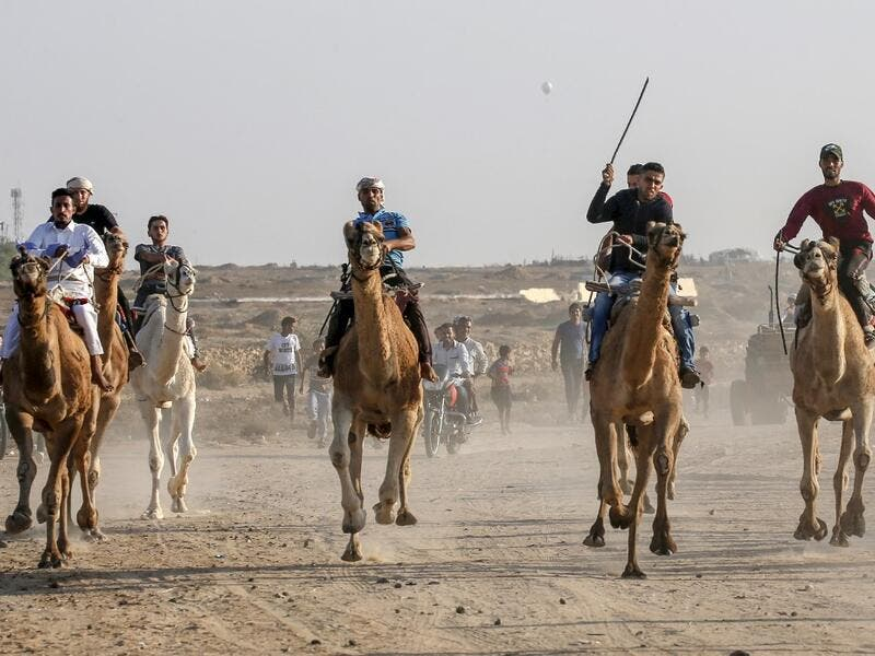 Palestinian jockeys compete during a local camel race held at the destroyed Gaza airport, in Rafah in the southern Gaza Strip on October 20, 2019. SAID KHATIB / AFP