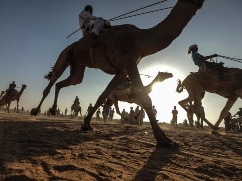 A Palestinian jockey competes during a local camel race held at the destroyed Gaza airport (Twitter)