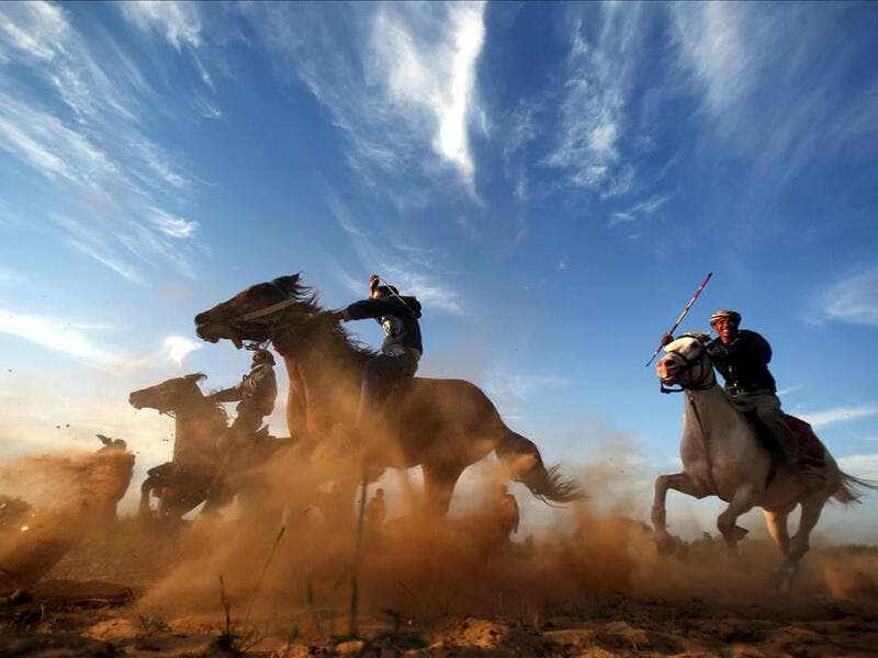 Horse and camel races are spotlighted while lack of sports activity due to embargo in Gaza, Bilal Khaled / Anadolu Agency