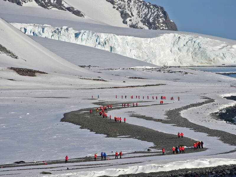 Tourists visit Yankee Harbour in the South Shetland Islands, Antarctica, on November 06, 2019. Johan ORDONEZ / AFP