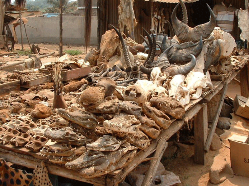 5. Lome Voodoo Market in Togo