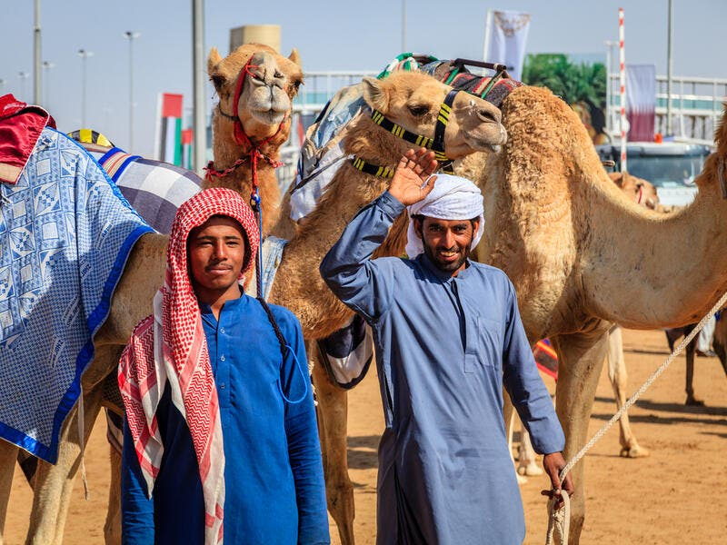 With their handlers at the Dubai Camel Racing Club (Shutterstock/File Photo)