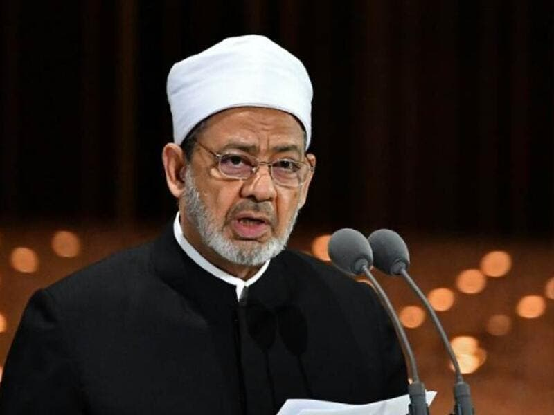 Egypt's grand imam of Al-Azhar Mosque, Sheikh Ahmed al-Tayeb (AFP)