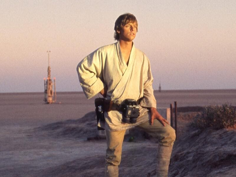 Contemplating the horizon. (Lucasfilm)