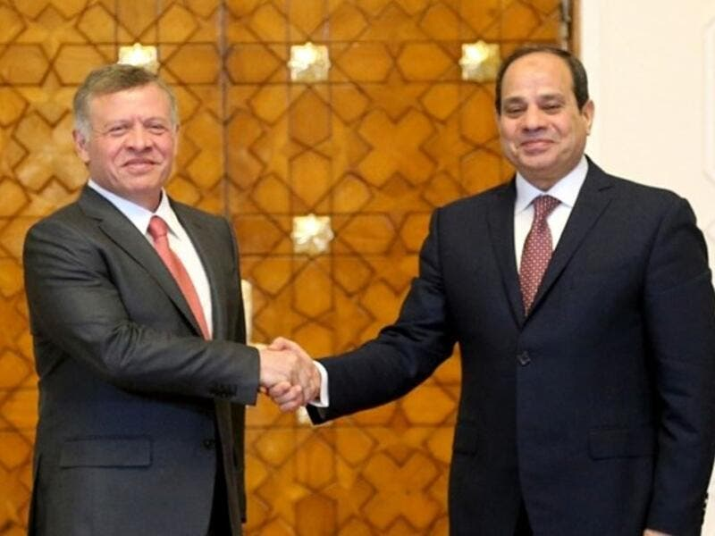 Jordan's King Abdullah II (L) shaking hands with Egyptian President Abdel-Fattah al-Sisi during a meeting in Cairo. (AFP/ File)