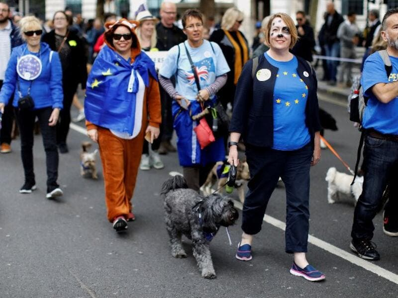 "Dog owners and their pets participating in ""People's Vote on Brexit"", in central London. (Tolga AKMEN / AFP)"