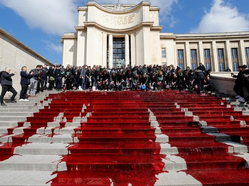 Members of the action group Extinction Rebellion (XR) spill fake blood on the steps of the Trocadero esplanade during a demonstration to alert on the state of decline of biodiversity, on May 12, 2019 in Paris. FRANCOIS GUILLOT / AFP