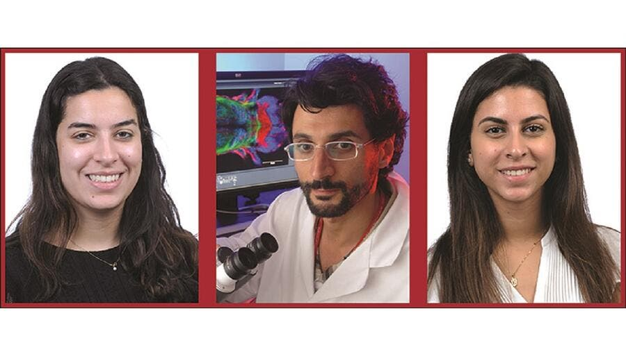 WCM-Q Student Researchers Probe Effects of COVID-19 on Pregnancy