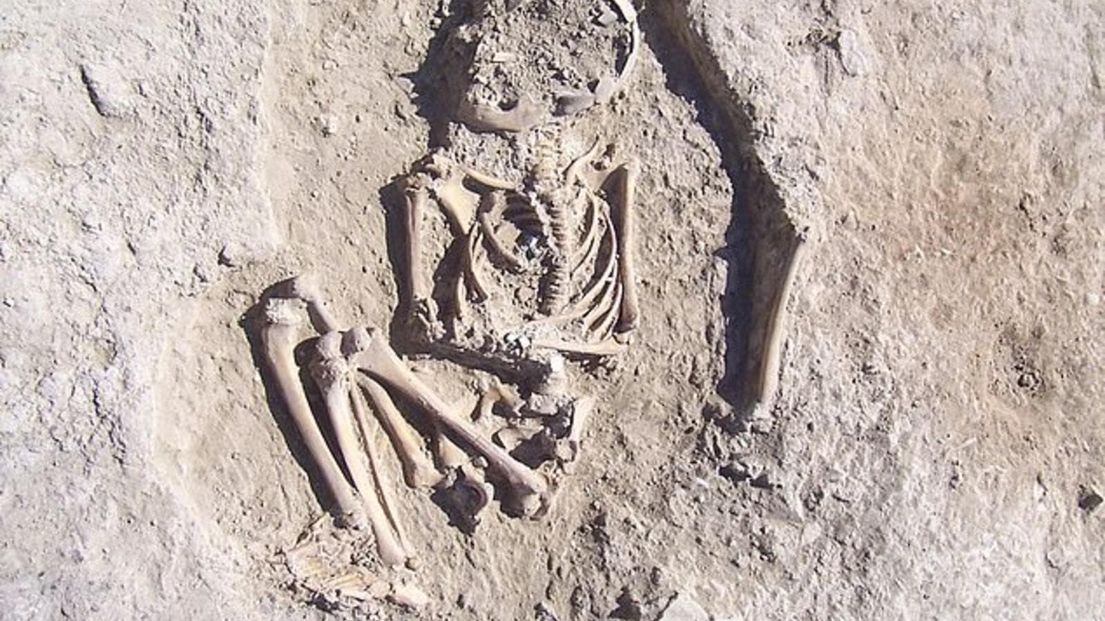Anthropologists believe the bones belonged to a six-year-old who most likely died of trauma in the 4th millennium BC. (Daily Mail)