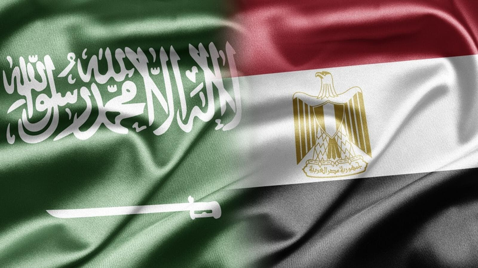 Saudi investments firms were and still are interested in Egypt's recovering economy. (Shutterstock)