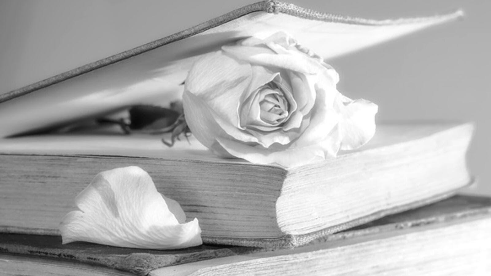 ما تفسير رؤية الورود في المنام البوابة