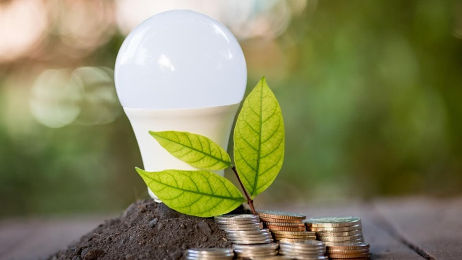 The UAE is working to create a more sustainable and energy-efficient country, but the success of these initiatives depends on household consumption. (Shutterstock)