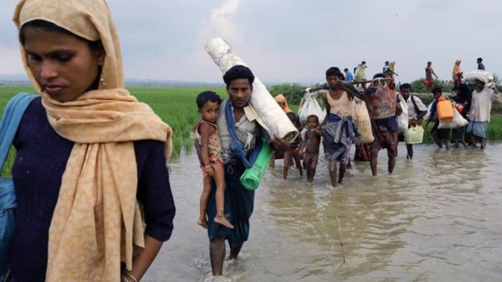UN official flatly rejected Myanmar's claims the regime is ready to take back the Rohingya refugees. (AFP/ File Photo)