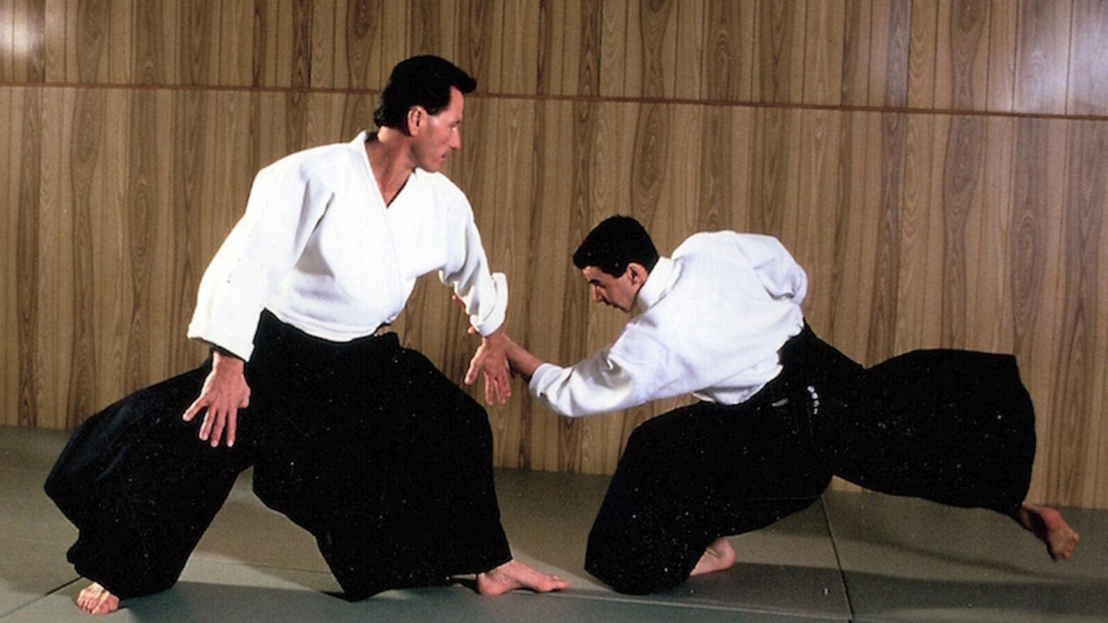 Aikido (Photo: aikikaiaikidomushinkan.com)