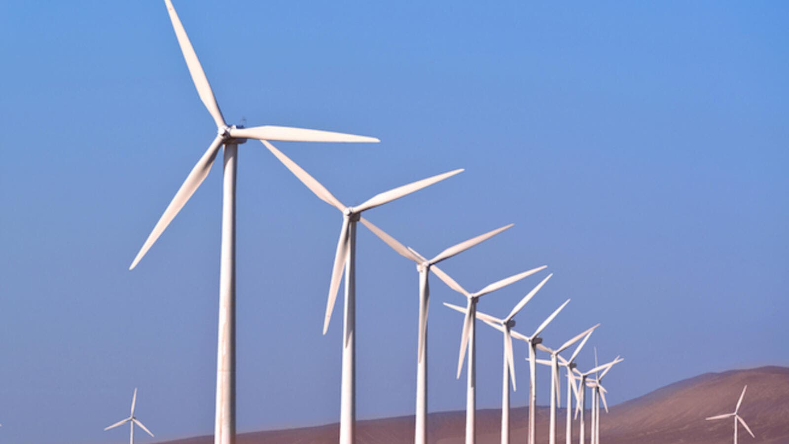 Siemens Gamesa will establish a transformer substation to move the energy produced from the first wind farm in Ras Ghareb, with a capacity of 220 kV to transfer 180 MW, and another station of 500 kV to transfer 650 MW. (Shutterstock)