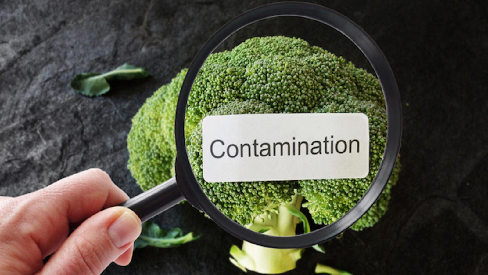 "Highlighting that unsafe food threatened especially young children, the report added: ""Although children under 5 make up only 9 percent of the world's population, they account for almost 40 percent of foodborne disease and 30 percent of related deaths."" (Shutterstock)"