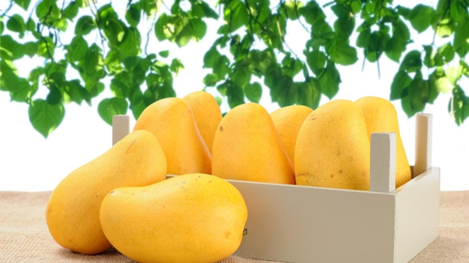 Simple Ways to Live a Long and Healthy Life - best chaunsa mango in Pakistan