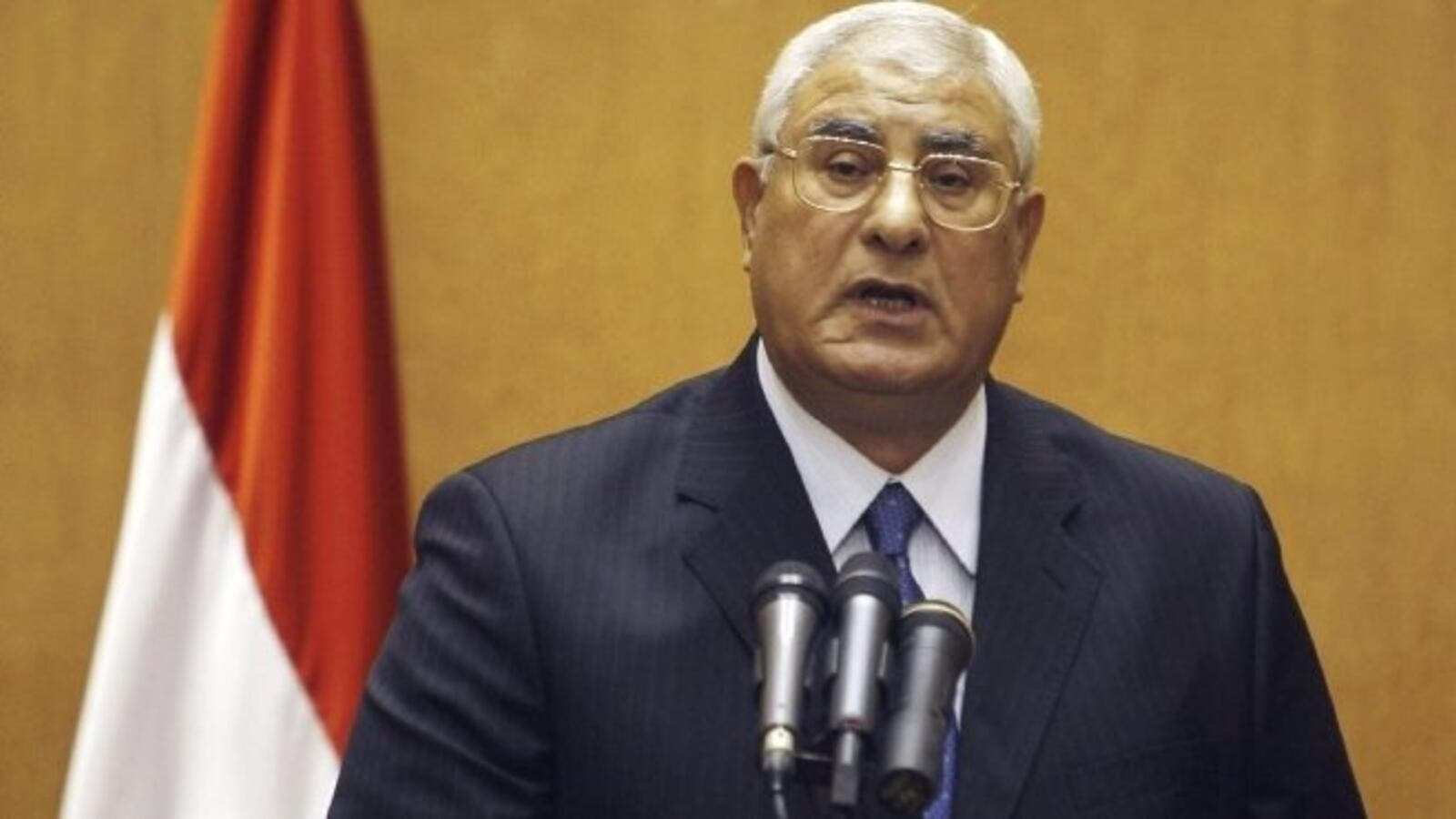Egypt's interim president Adly Mansour issued a new protest law Sunday (File Archive/AFP)