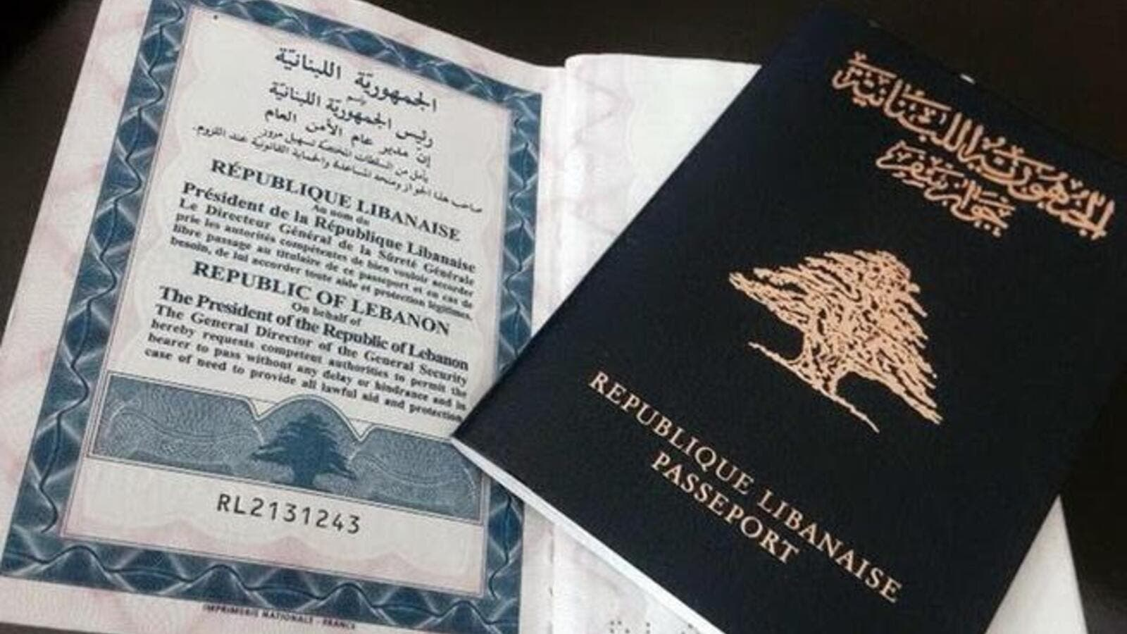 Image result for lebanese investment in passport