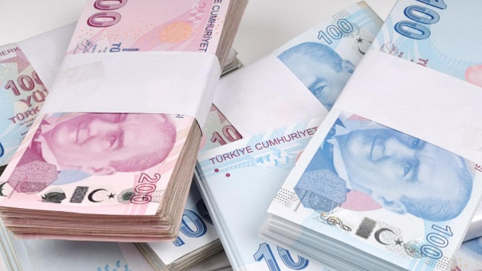 The currency recovered most of its losses after significant tightening by the country's central bank. (Shutterstock)
