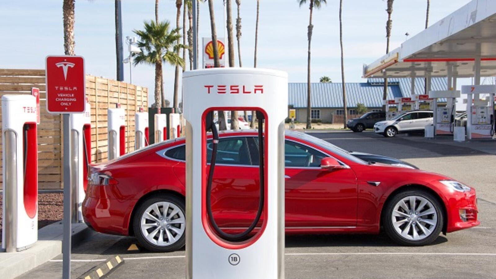 Electric automaker Tesla has formed an independent special committee to explore the possibility of becoming a private company. (Shutterstock)