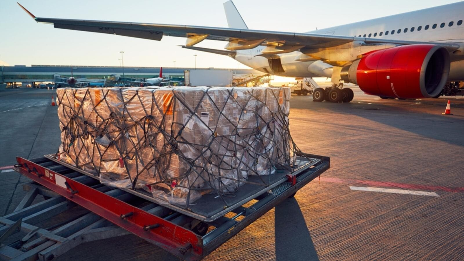 COVID-19 Results In the Rise of Demand for Urgent Cargo Shipments