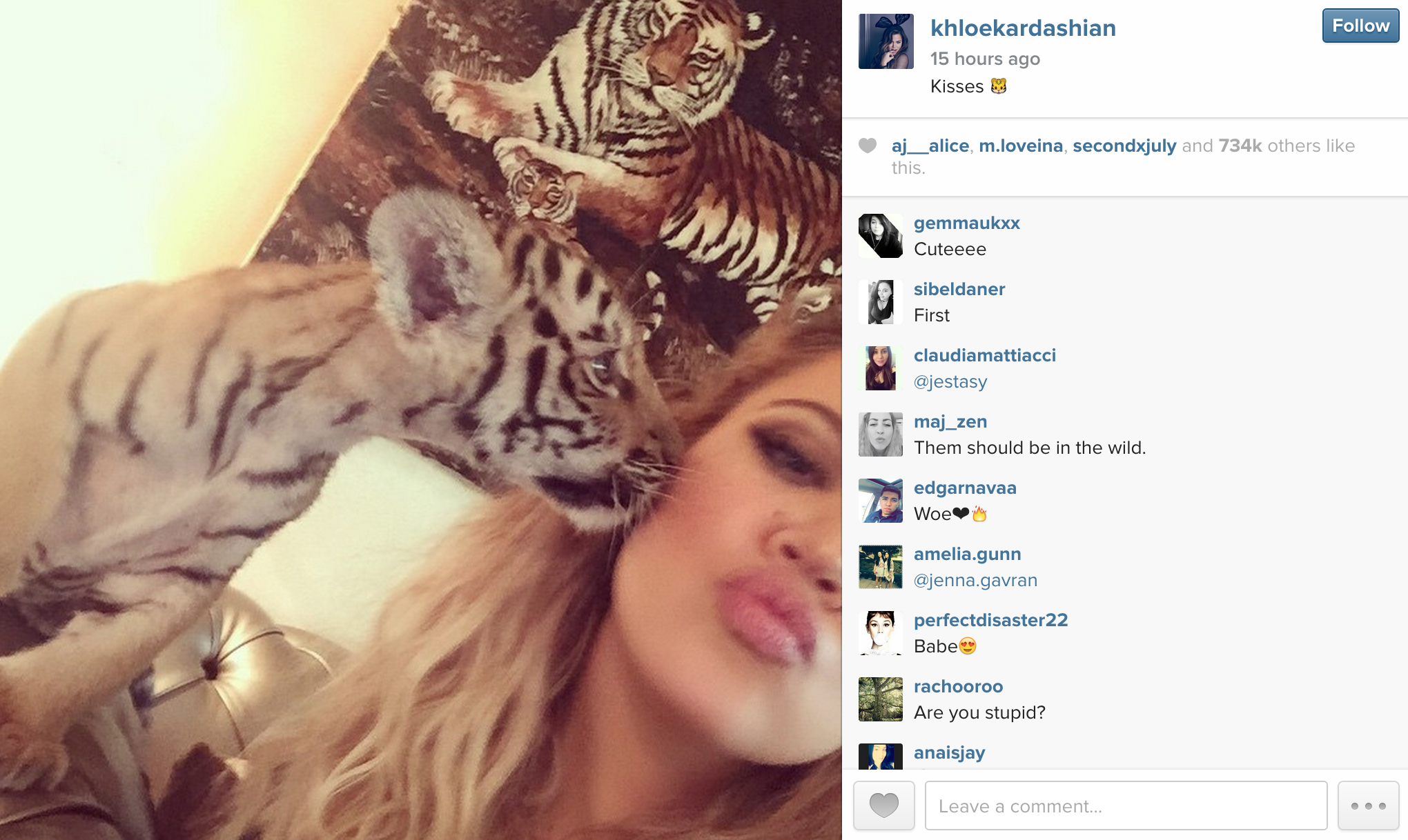 Animal rights activists roar with anger over Khloe Kardashian's Dubai tiger selfie! | Al Bawaba