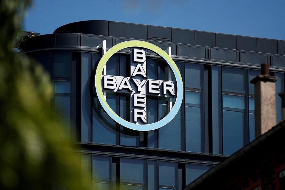 Baywr