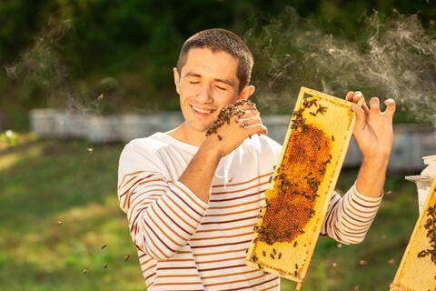 Turkey is the World's 2nd Largest Beekeeper in The World