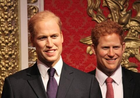 If Princess Diana Was Alive Prince William and Prince Harry Wouldn't Have Fallen out