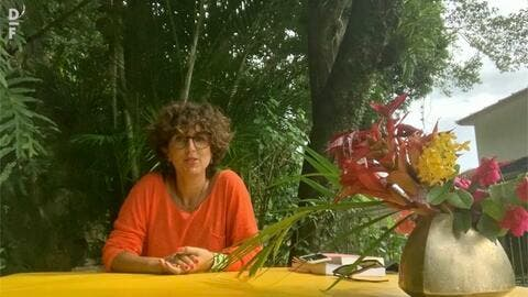 'Make Yourself at Home': Tropical Escape for Lebanese Artists