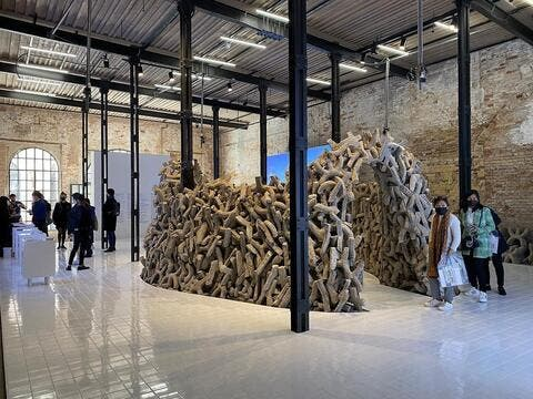 UAE Architects Display Its 'Wetlands' in The 2021 Venice Biennale