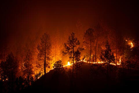 Death Toll in Turkey's Forest Fires up to 3 With 62 Hospitalized