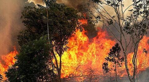 الحرائق تصل تونس وقيس سعيد يتهم اطرافا باشعالها