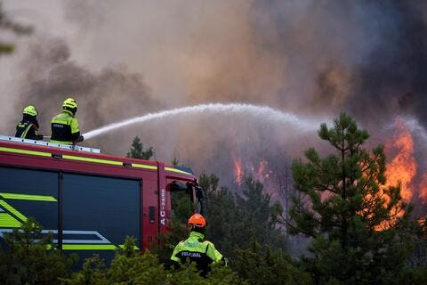 Algeria's Forest Fires Death Toll Rises to 65