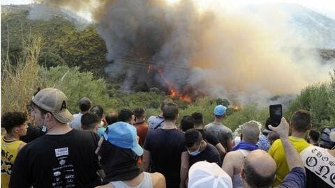 الإعلام الجزائري: هكذا تحدث الحرائق في البلاد