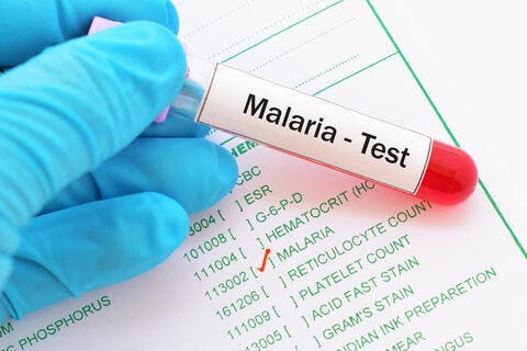 WHO Backs The First Malaria Vaccine