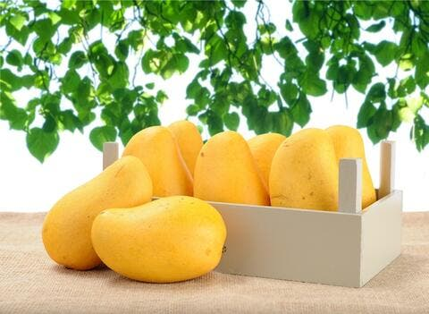 Oman goes crazy over first shipment of Pakistani mangoes